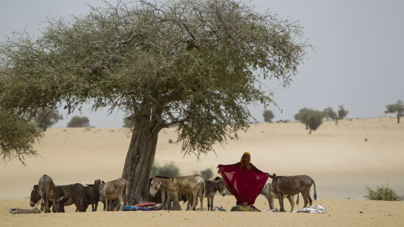 Researchers: Climate Change May Turn Africa's Arid Sahel Green