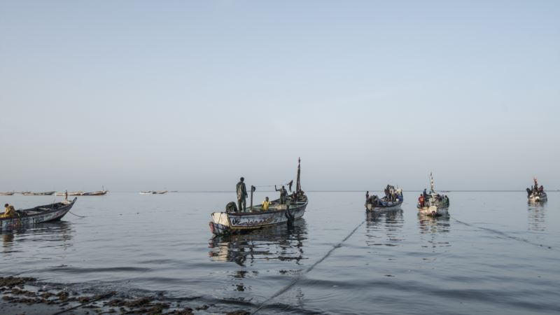 Chinese Overfishing Threatens West African Economies