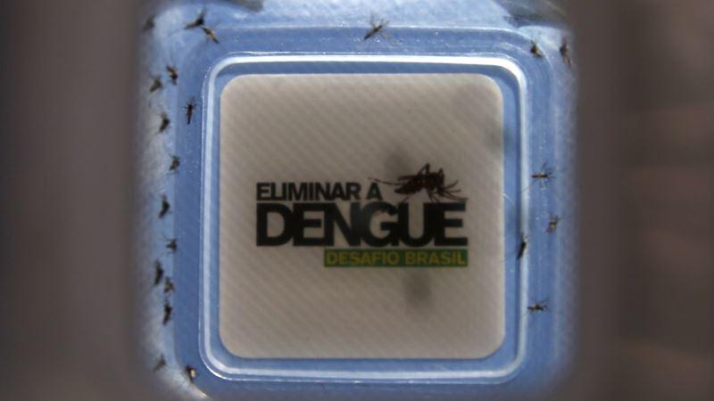 Vietnam Dengue Cases Soar 42 Percent