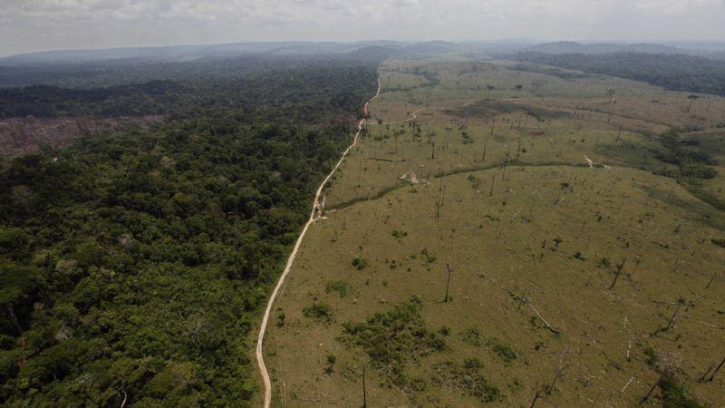 Brazil Investigates Amazon Plane Crash Killing Environment Officials