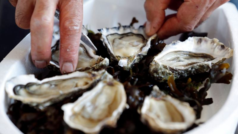 French Oysters Go on Sale in Vending Machines