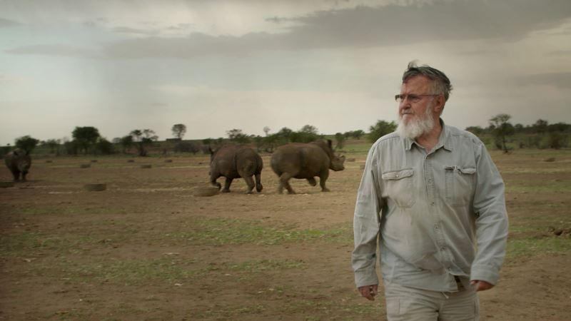 Killing to Conserve? 'Trophy' Raises Difficult Questions