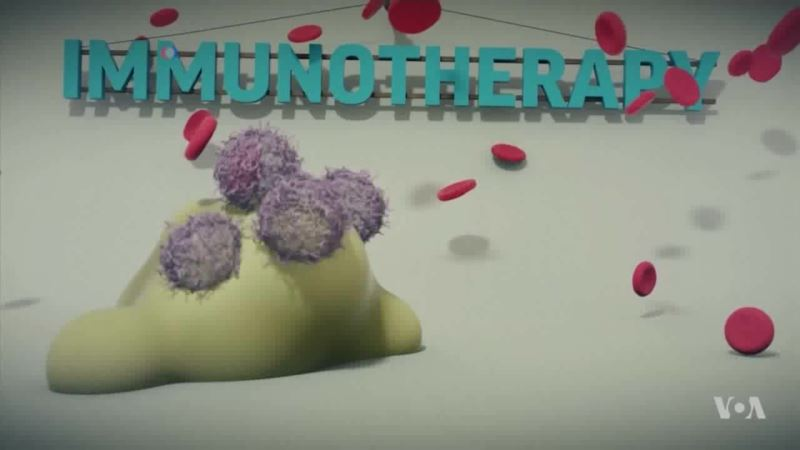 The Pros and Cons of Immunotherapy Drugs