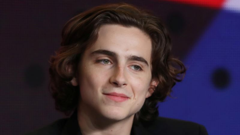 Toronto a Coming-out Party for Actor Timothee Chalamet