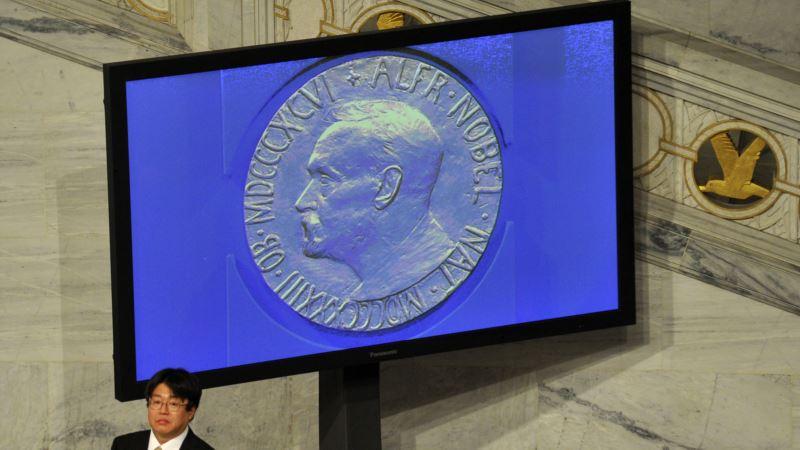Nobel Literature Prize: Honoring the Elusive 'Ideal'