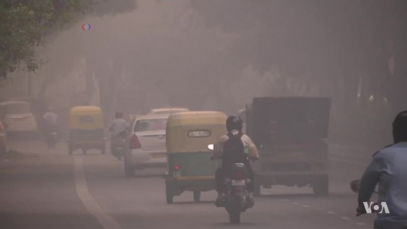 Wide-ranging Report Tackles Pollution as a Public Health Issue