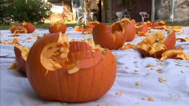 New York Man Smashes Pumpkins to Set Guinness Record