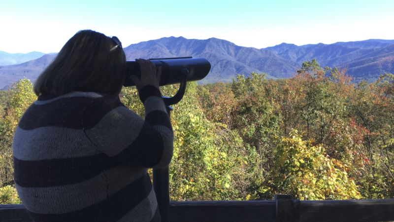 Viewfinders Unveil Tennessee Fall Colors for the Colorblind