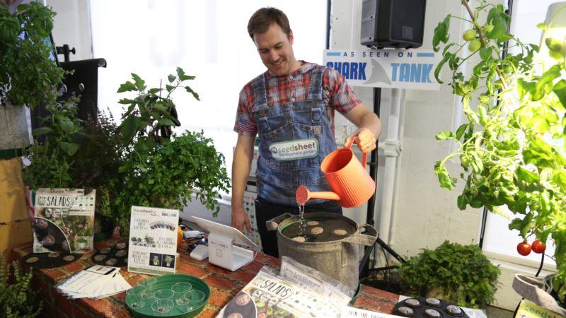 Urban Farming Technologies Crop Up in Homes, Restaurants