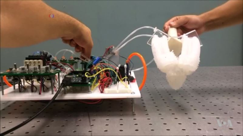 Robotic Fingers Get a Feel for the Real World