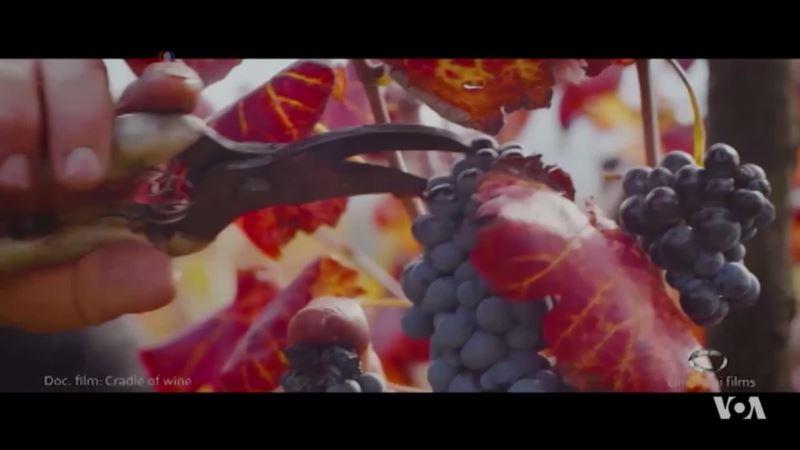 Georgia Lays Claim to the Origins of Wine