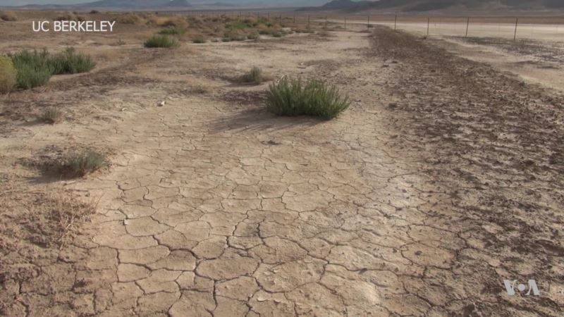 Scientists Harvest Drinking Water from Desert Air