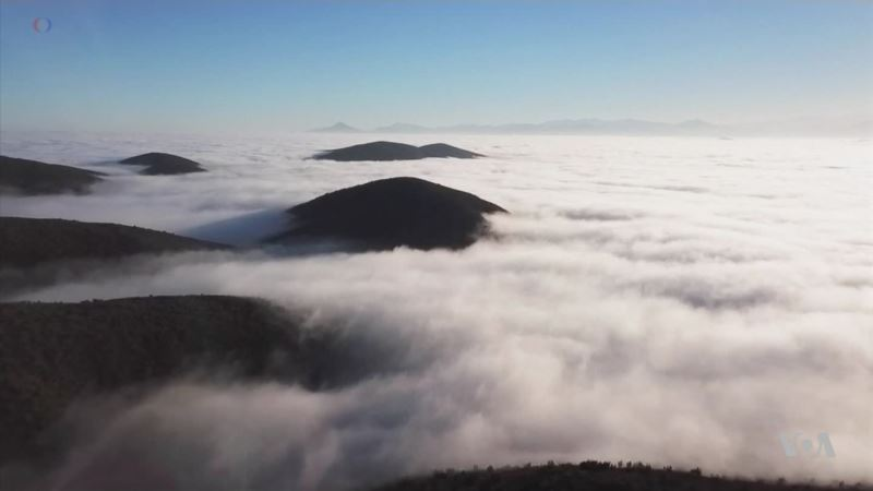 Fog May Help Quench World's Thirst
