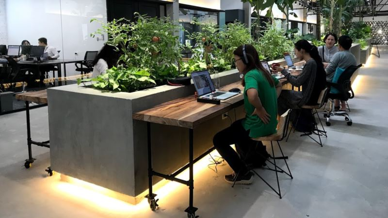Cybersecurity Becoming Major Concern for Vietnamese Businesses