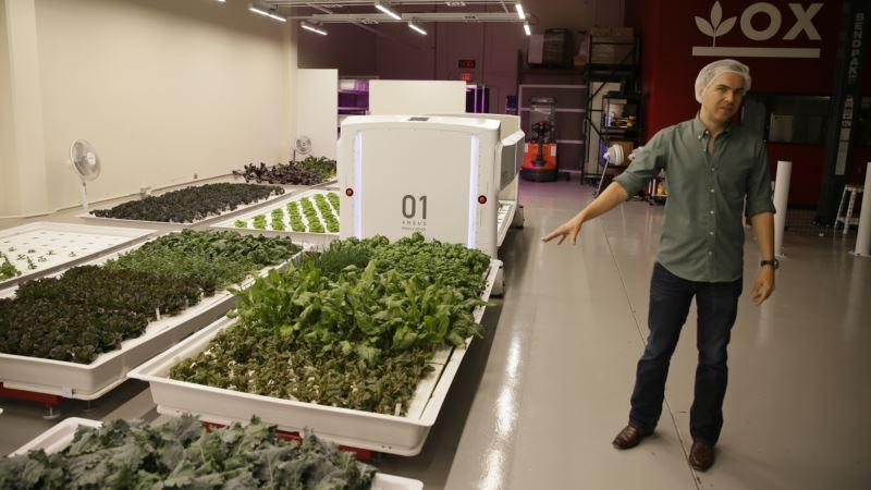 Meet Farmers of Future: Robot