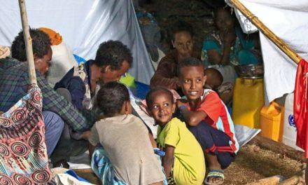 Tigray Forces Fire Rockets Into Neighboring Ethiopian Region