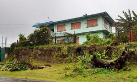 Cyclone Yasa Leaves Extensive Damage but Few Casualties, Aid Agencies Say