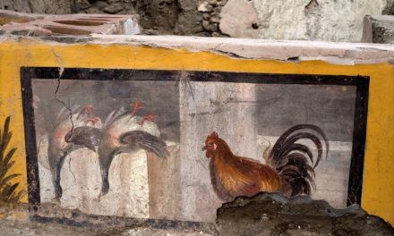 Dig of Pompeii Fast-food Place Reveals Tastes