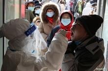 WHO Team to Investigate Coronavirus Origins in China
