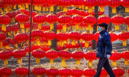 China Negotiates With WHO Over Permission for Experts to Travel to Wuhan